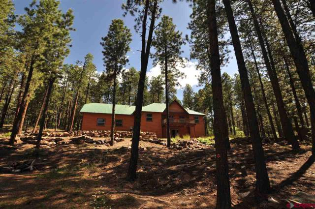 103 E Forest Lakes Drive, Bayfield, CO 81122 (MLS #746827) :: Durango Home Sales