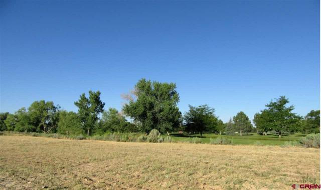 2415 Golf Course Lane  Lot #10, Cortez, CO 81321 (MLS #746845) :: Durango Home Sales