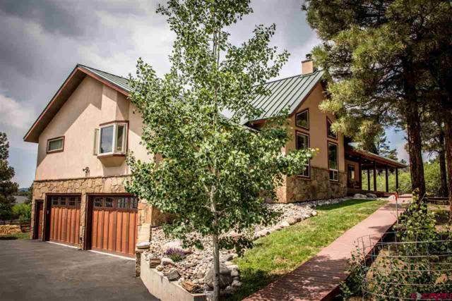 117 Oxbow Circle, Pagosa Springs, CO 81147 (MLS #746859) :: Durango Home Sales