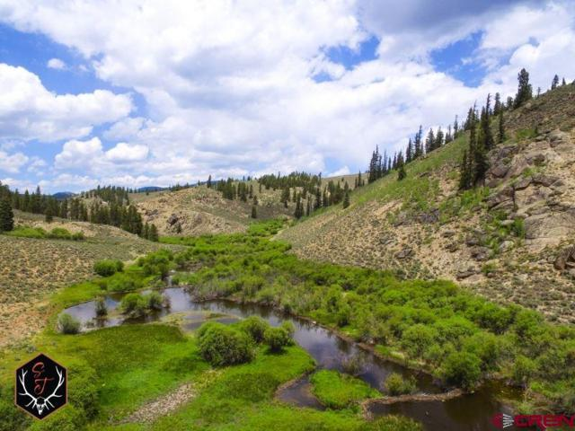 20000 Cr 743 Road, Almont, CO 81210 (MLS #746915) :: The Dawn Howe Real Estate Network | Keller Williams Colorado West Realty