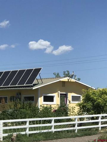 31268 L Road, Hotchkiss, CO 81419 (MLS #746951) :: Durango Home Sales