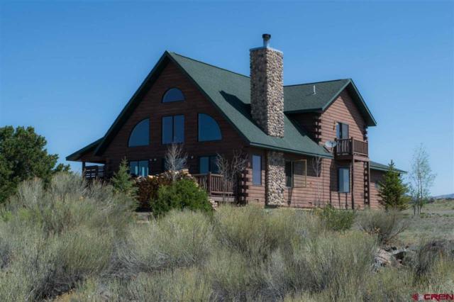 161 W Pfeiffer Loop, South Fork, CO 81154 (MLS #746955) :: Durango Home Sales