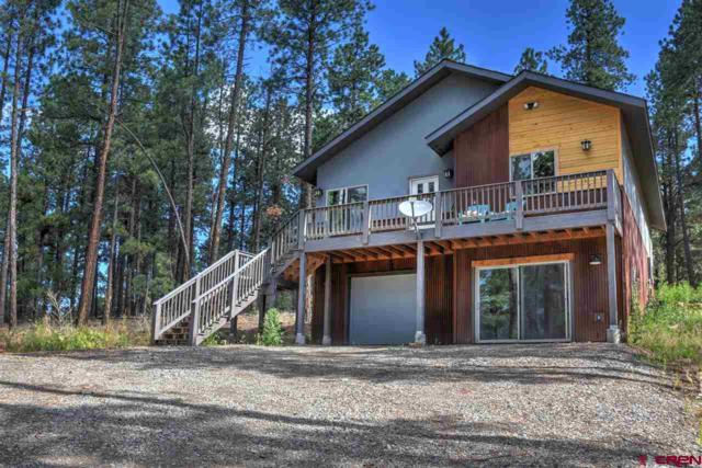 53 Cub Court, Bayfield, CO 81122 (MLS #746957) :: Durango Home Sales