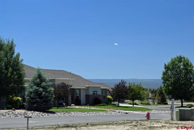 Lot U4 Senate Street, Montrose, CO 81401 (MLS #746964) :: CapRock Real Estate, LLC