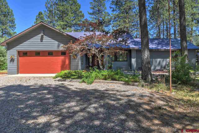 624 W Los Ranchitos Drive, Durango, CO 81301 (MLS #747010) :: Durango Mountain Realty