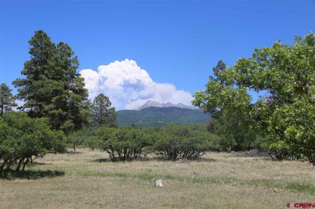 35812 Road J.9, Mancos, CO 81328 (MLS #747066) :: CapRock Real Estate, LLC