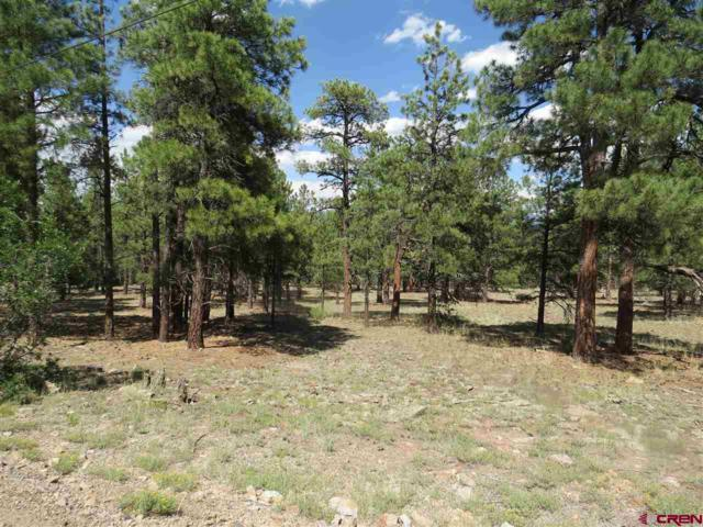 46 S Squaw Canyon Pl, Pagosa Springs, CO 81147 (MLS #747092) :: CapRock Real Estate, LLC