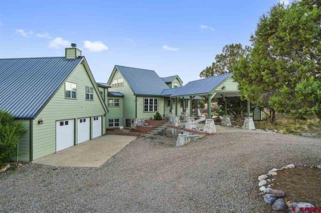 190 Belle Starr, Durango, CO 81303 (MLS #747119) :: Durango Mountain Realty