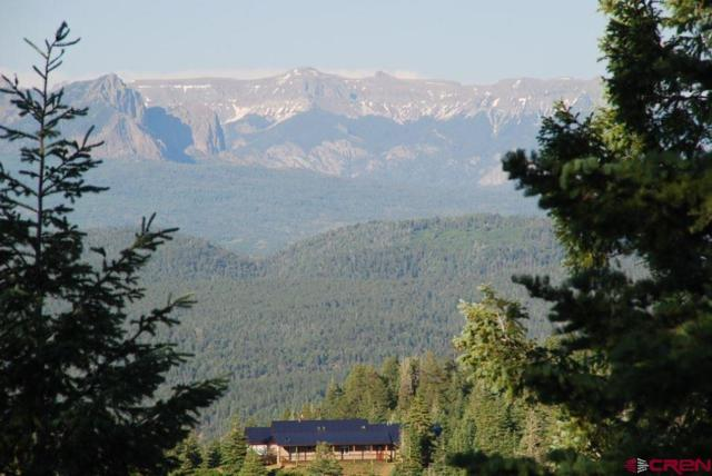 X Cold Springs Ct., Pagosa Springs, CO 81147 (MLS #747132) :: CapRock Real Estate, LLC