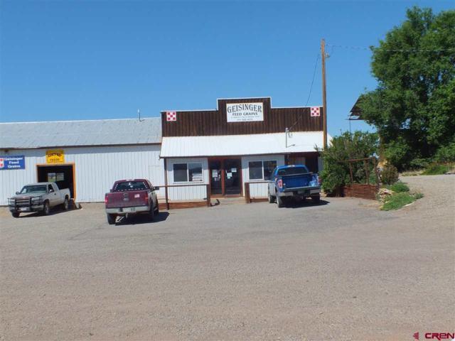 12185 Hwy 491, Cortez, CO 81321 (MLS #747144) :: Durango Home Sales