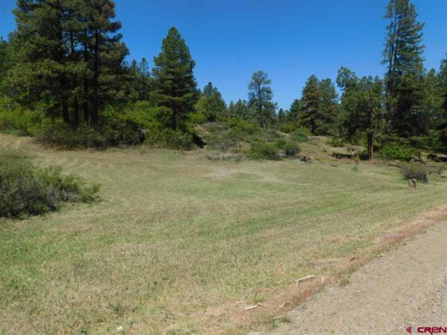 149 Aztec Drive, Pagosa Springs, CO 81147 (MLS #747220) :: CapRock Real Estate, LLC