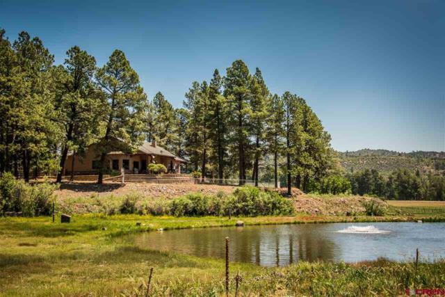 516 Cr 505, Bayfield, CO 81122 (MLS #747224) :: CapRock Real Estate, LLC