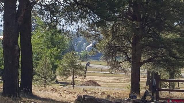86 Hackamore Place, Pagosa Springs, CO 81147 (MLS #747314) :: CapRock Real Estate, LLC