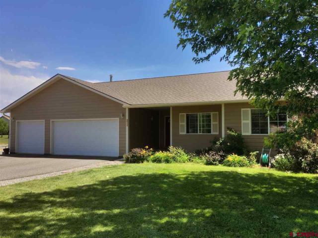 11600 Joyful Way, Montrose, CO 81401 (MLS #747369) :: CapRock Real Estate, LLC