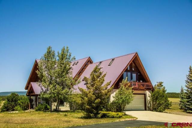 784 Northlake Avenue, Pagosa Springs, CO 81147 (MLS #747396) :: CapRock Real Estate, LLC
