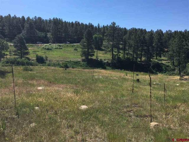 100 Sweetwater Drive, Pagosa Springs, CO 81147 (MLS #747438) :: Durango Home Sales