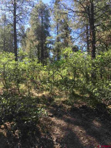 117 Heather Place, Pagosa Springs, CO 81147 (MLS #747439) :: Durango Home Sales
