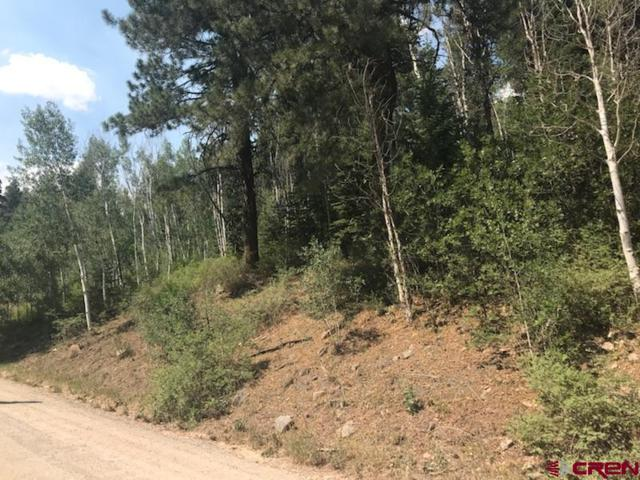 TBD Trew Creek Drive, Durango, CO 81301 (MLS #747473) :: Durango Mountain Realty