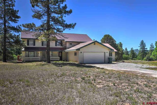 255 S Elk, Durango, CO 81303 (MLS #747479) :: Durango Mountain Realty
