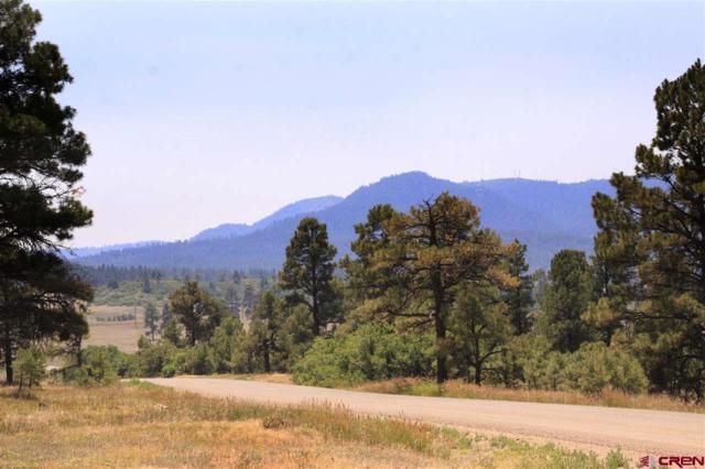 478 Bonanza Avenue, Pagosa Springs, CO 81147 (MLS #747481) :: Durango Home Sales