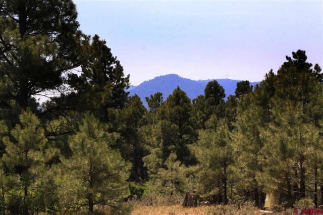 445 Bonanza Avenue, Pagosa Springs, CO 81147 (MLS #747482) :: Durango Home Sales