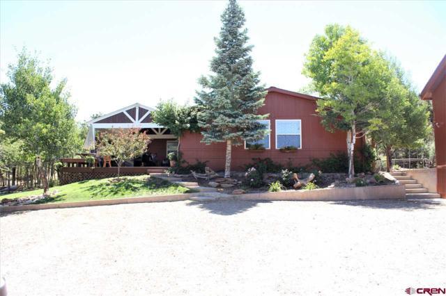 18640 Road 27, Dolores, CO 81323 (MLS #747502) :: Durango Home Sales