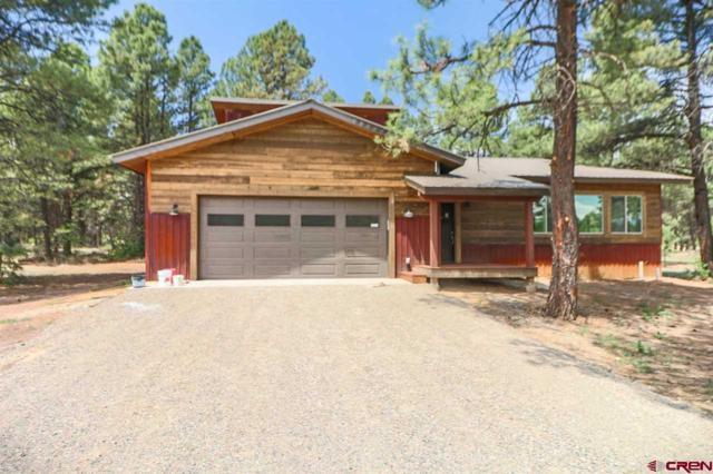 1052 Lake Forest Circle, Pagosa Springs, CO 81147 (MLS #747521) :: CapRock Real Estate, LLC