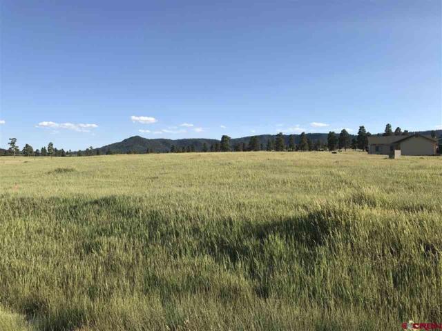 15 Paisley Court, Pagosa Springs, CO 81147 (MLS #747523) :: Durango Home Sales