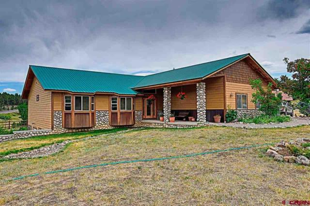 34 Capitan Circle, Pagosa Springs, CO 81147 (MLS #747536) :: Durango Home Sales