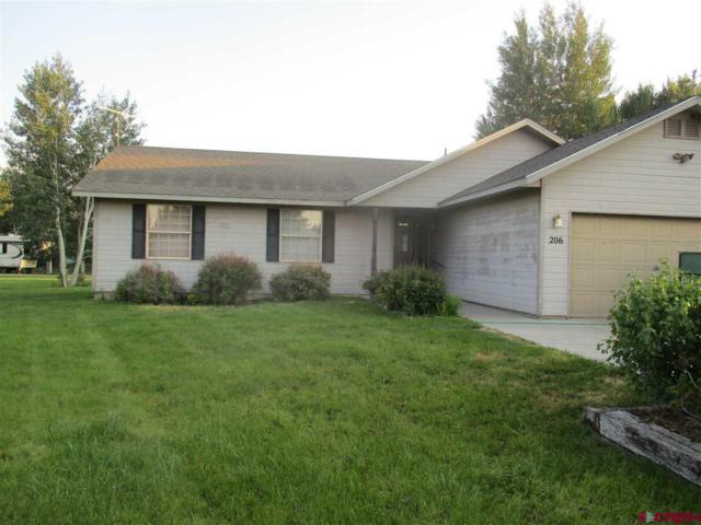 206 Willow Trail, Gunnison, CO 81230 (MLS #747552) :: CapRock Real Estate, LLC