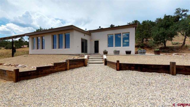 2126 County Road 309A, Ignacio, CO 81137 (MLS #747585) :: Durango Home Sales