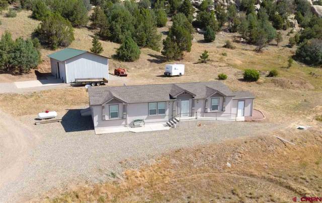 2124 County Road 309A, Ignacio, CO 81137 (MLS #747587) :: Durango Home Sales