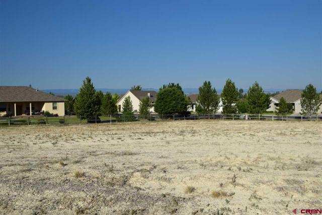 Lot T9 Senate Street, Montrose, CO 81401 (MLS #747596) :: Durango Home Sales