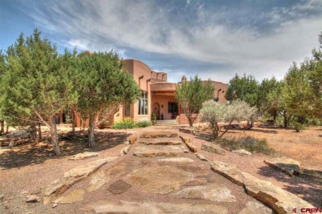 Address Not Published, Cortez, CO 81321 (MLS #747608) :: Durango Home Sales