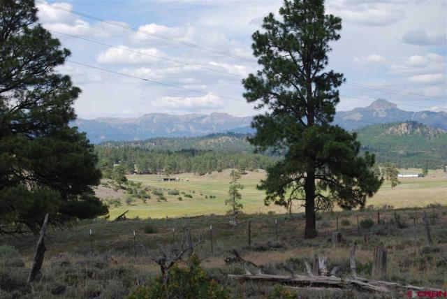 677 Loma Linda Drive, Pagosa Springs, CO 81147 (MLS #747609) :: CapRock Real Estate, LLC
