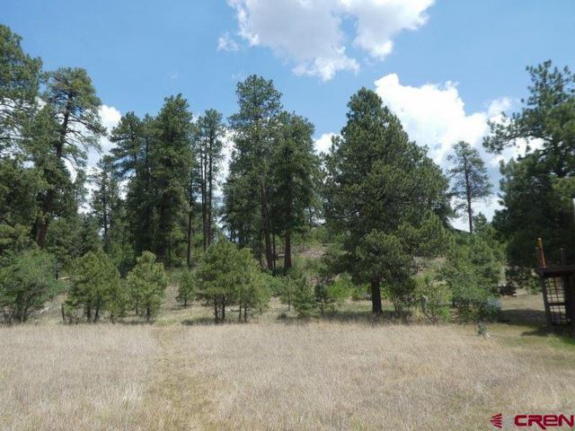 1086 Hills Circle, Pagosa Springs, CO 81147 (MLS #747624) :: CapRock Real Estate, LLC