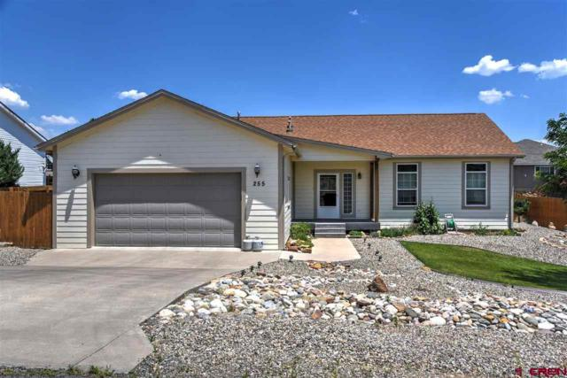 255 Homestead Circle, Bayfield, CO 81122 (MLS #747679) :: CapRock Real Estate, LLC