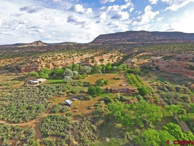 14537 Road G, Cortez, CO 81321 (MLS #747705) :: Durango Home Sales