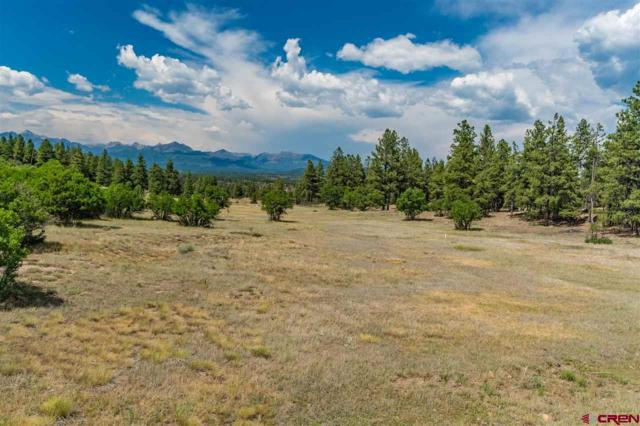 1178 Oakbrush, Pagosa Springs, CO 81147 (MLS #747728) :: CapRock Real Estate, LLC