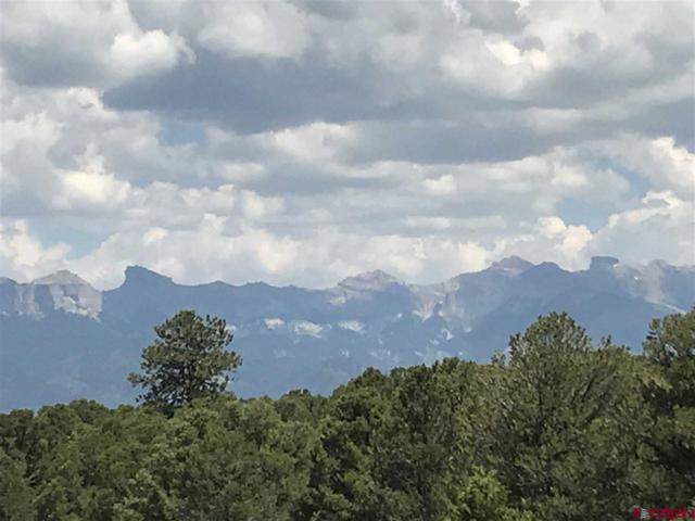 132 Turkey Trail, Ridgway, CO 81432 (MLS #747733) :: CapRock Real Estate, LLC