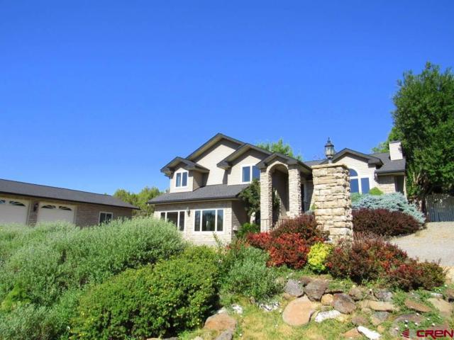 240 SE Apple Court, Cedaredge, CO 81413 (MLS #747735) :: Durango Home Sales