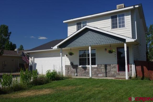1980 Stan Drive, Montrose, CO 81401 (MLS #747753) :: CapRock Real Estate, LLC