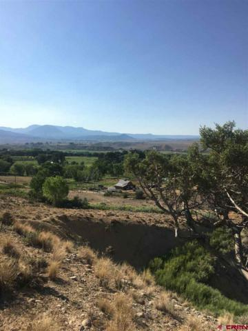 TBD Outlook Rd., Hotchkiss, CO 81419 (MLS #747794) :: CapRock Real Estate, LLC