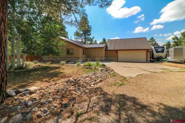 22 Brassie Court, Pagosa Springs, CO 81147 (MLS #747809) :: CapRock Real Estate, LLC
