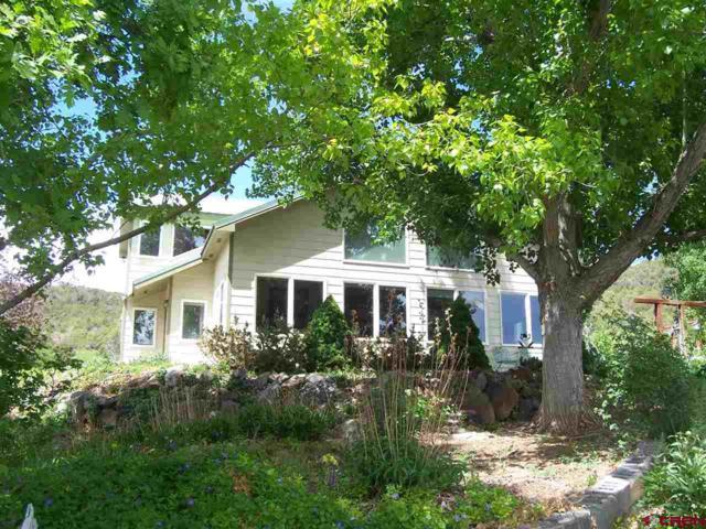 21294 Hwy 65, Cedaredge, CO 81413 (MLS #747812) :: CapRock Real Estate, LLC
