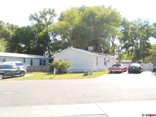 62880 Lasalle Road #196, Montrose, CO 81401 (MLS #747824) :: Durango Home Sales