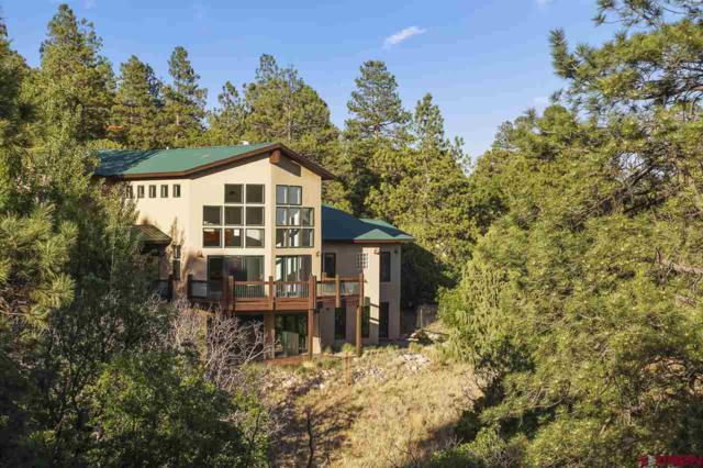 174 King Mountain Road, Durango, CO 81303 (MLS #747856) :: Durango Mountain Realty