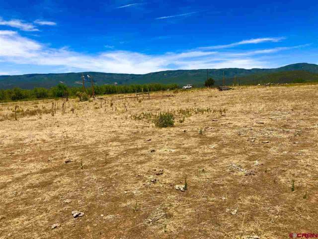 TBD 2375 Road, Cedaredge, CO 81413 (MLS #747868) :: CapRock Real Estate, LLC