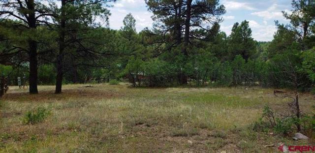 48 Balfour Court, Pagosa Springs, CO 81147 (MLS #747879) :: CapRock Real Estate, LLC