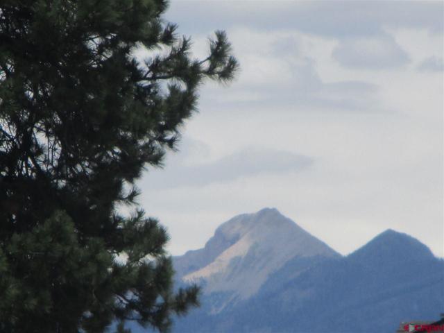 45 La Costa Court, Pagosa Springs, CO 81147 (MLS #747887) :: Durango Home Sales